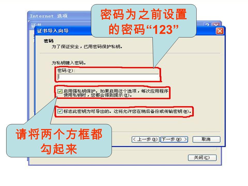 密码为之前设置 的密码 123 请将两个方框都 勾起来