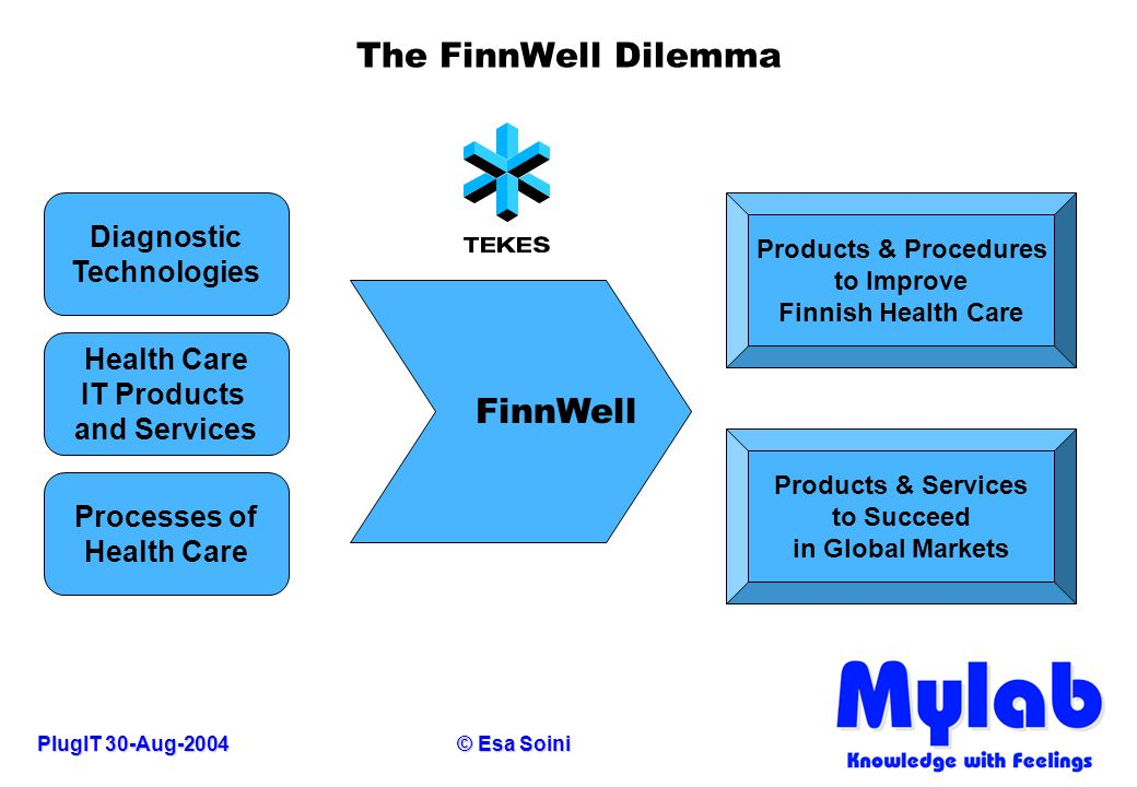 PlugIT 30-Aug-2004© Esa Soini The FinnWell Dilemma FinnWell Diagnostic Technologies Health Care IT Products and Services Processes of Health Care Prod