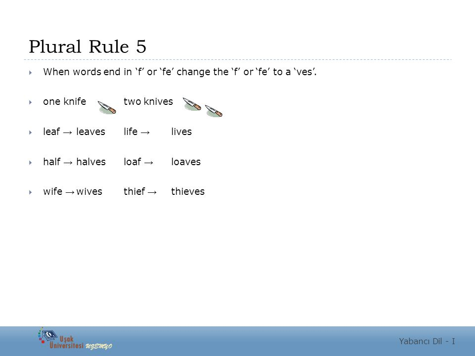 Plural Rule 5  When words end in 'f' or 'fe' change the 'f' or 'fe' to a 'ves'.