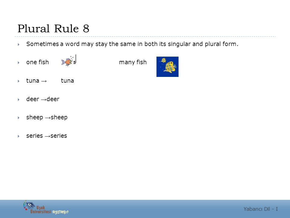 Plural Rule 8  Sometimes a word may stay the same in both its singular and plural form.