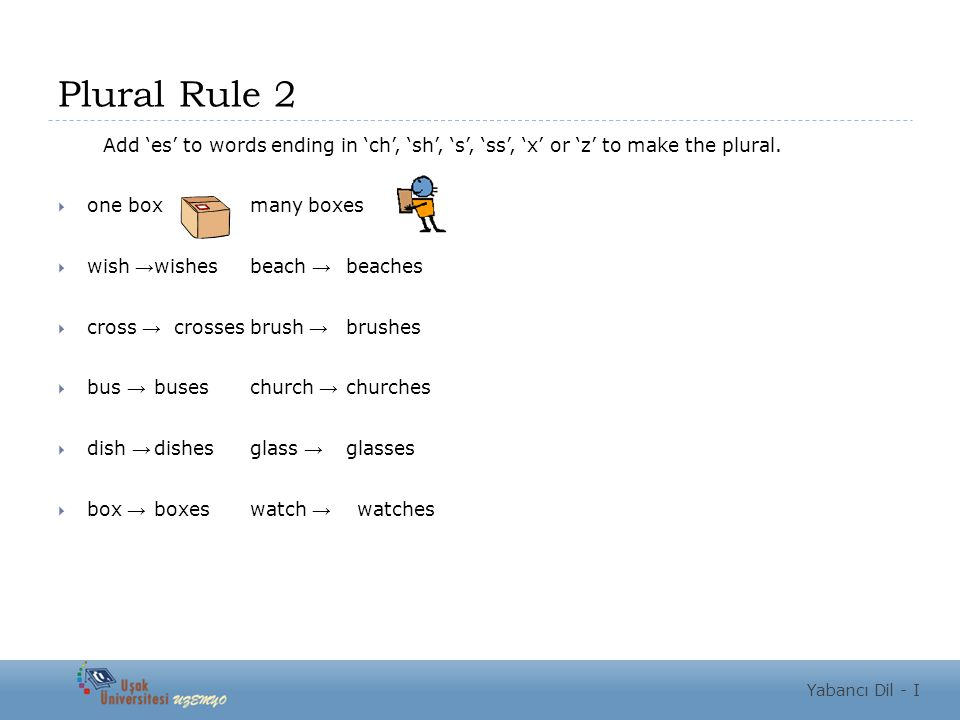 Plural Rule 2 Add 'es' to words ending in 'ch', 'sh', 's', 'ss', 'x' or 'z' to make the plural.