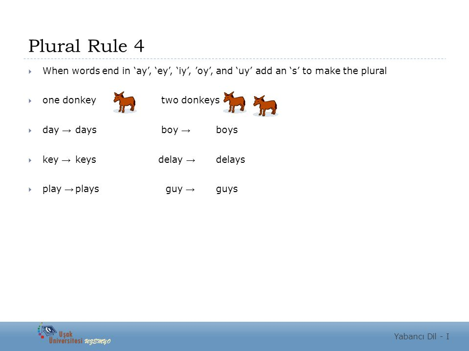 Plural Rule 4  When words end in 'ay', 'ey', 'iy', 'oy', and 'uy' add an 's' to make the plural  one donkey two donkeys  day → days boy → boys  key → keys delay → delays  play → plays guy → guys Yabancı Dil - I