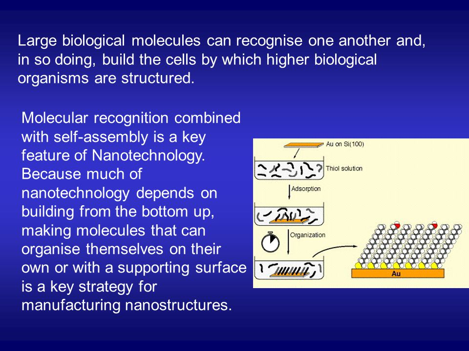 Large biological molecules can recognise one another and, in so doing, build the cells by which higher biological organisms are structured. Molecular
