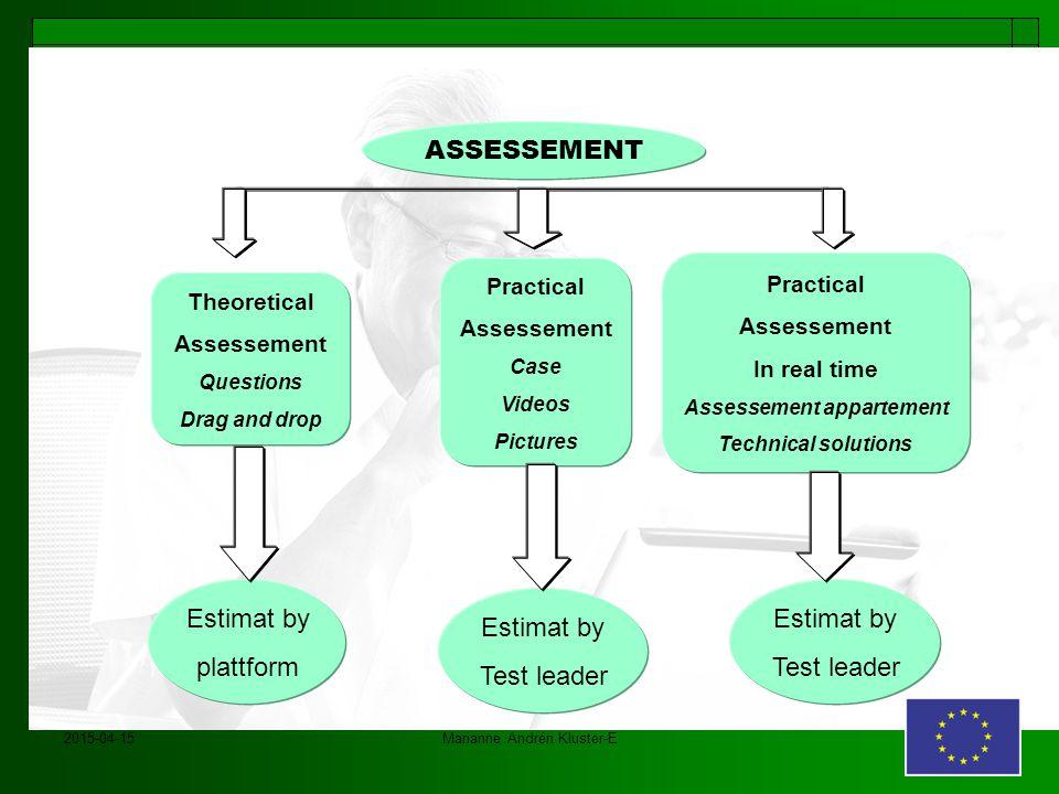 2015-04-15Marianne Andrén Kluster-E ASSESSEMENT Estimat by plattform Estimat by Test leader Estimat by Test leader Theoretical Assessement Questions D