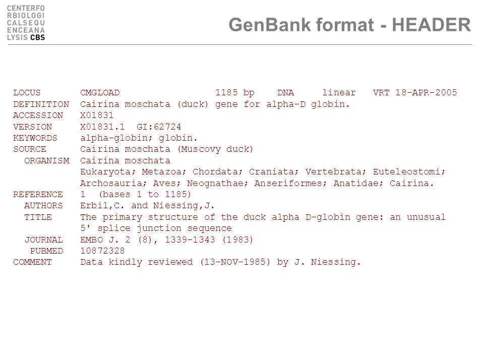 GenBank format - HEADER LOCUS CMGLOAD 1185 bp DNA linear VRT 18-APR-2005 DEFINITION Cairina moschata (duck) gene for alpha-D globin.