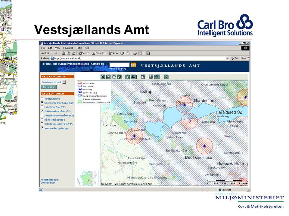 Vestsjællands Amt