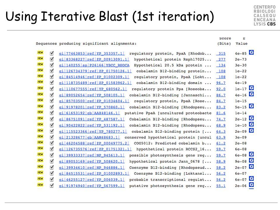 Using Iterative Blast (1st iteration)