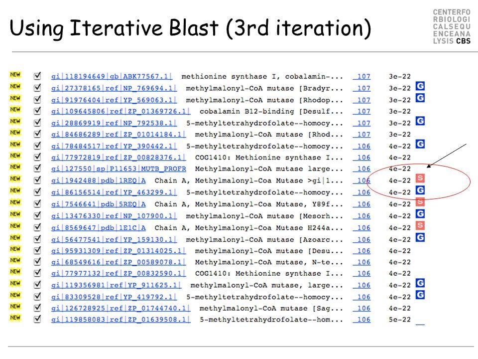 Using Iterative Blast (3rd iteration)