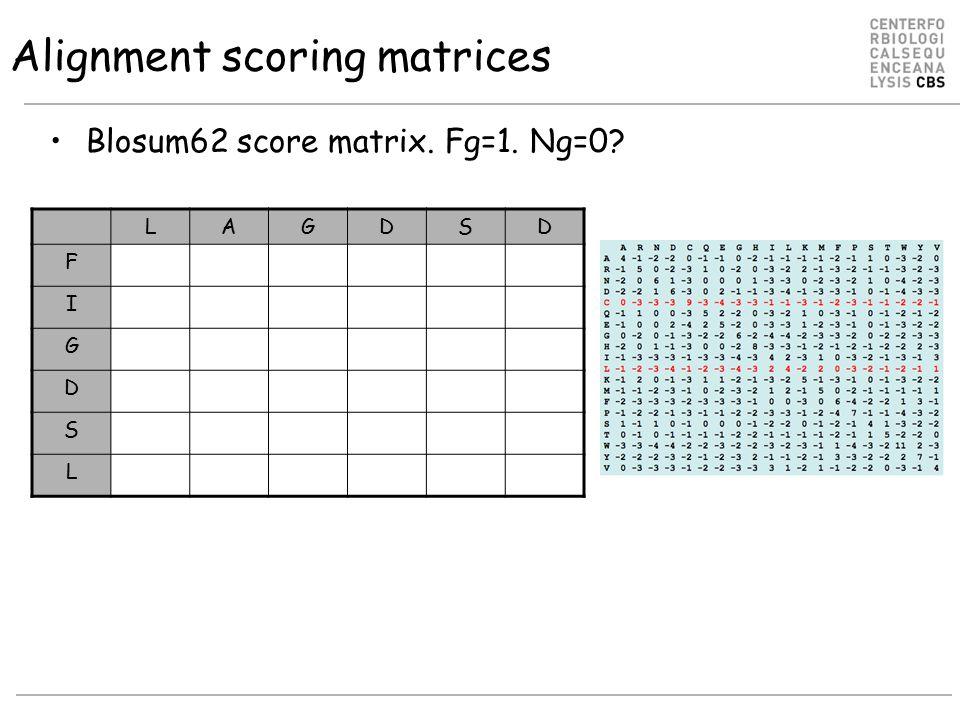 Alignment scoring matrices Blosum62 score matrix. Fg=1. Ng=0? LAGDSD F I G D S L