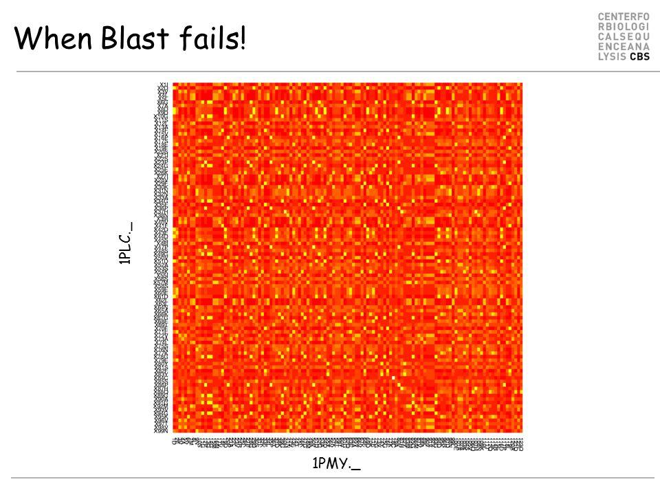 When Blast fails! 1PLC._ 1PMY._