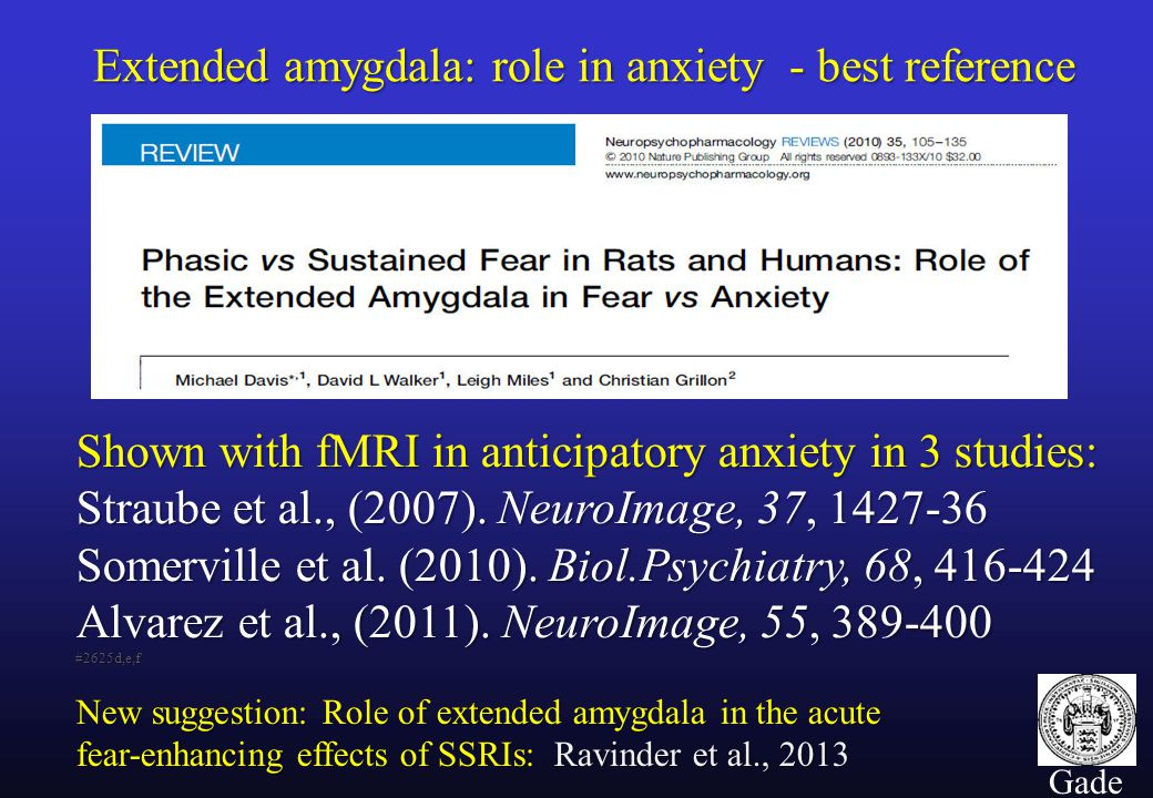 11 Gade Extended amygdala: role in anxiety - best reference Shown with fMRI in anticipatory anxiety in 3 studies: Straube et al., (2007).