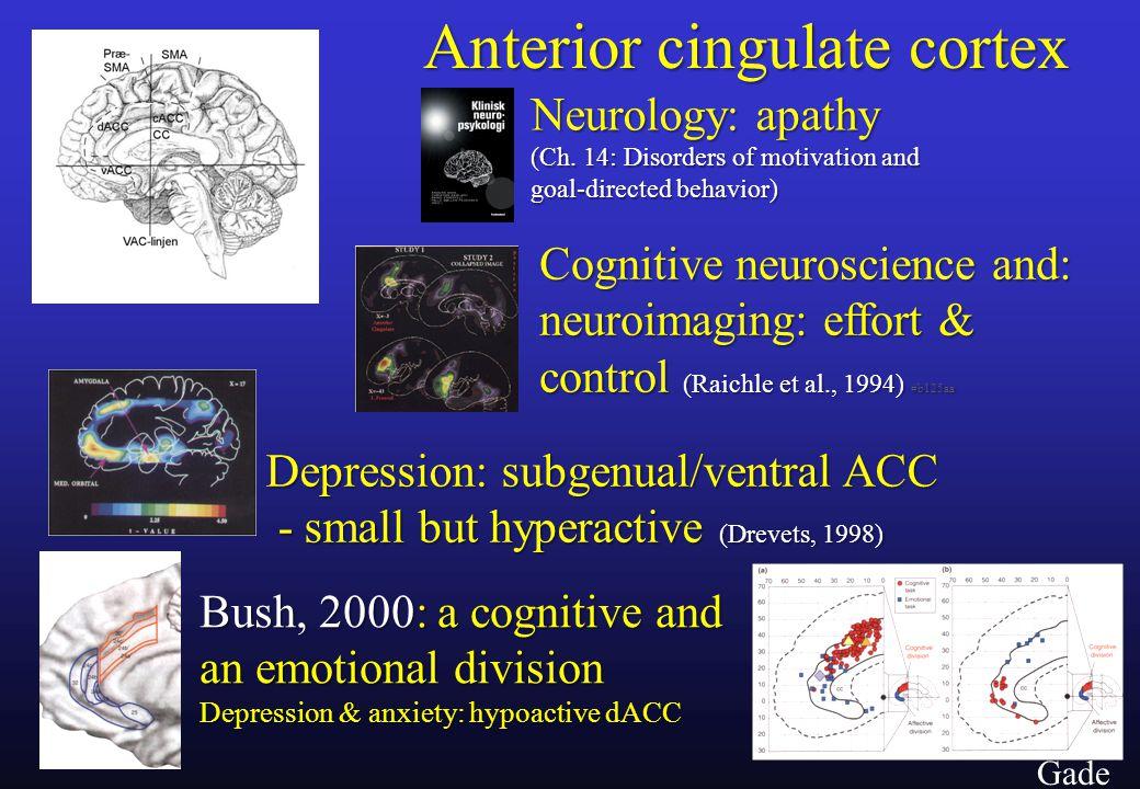29 Gade Anterior cingulate cortex Neurology: apathy (Ch.