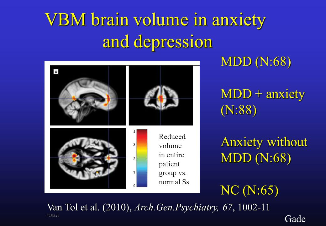 Gade VBM brain volume in anxiety and depression Van Tol et al.