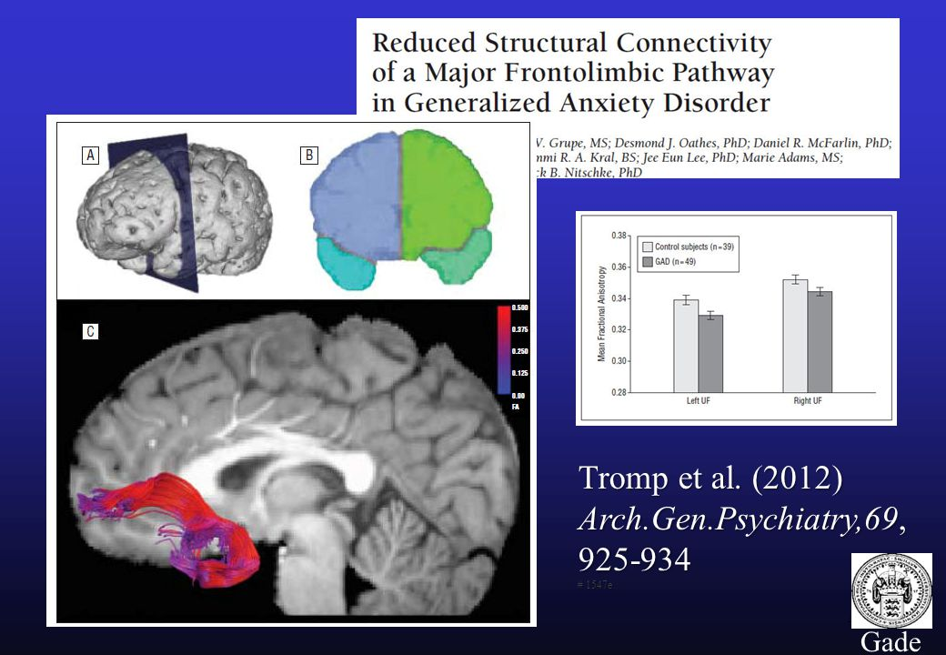 46 Gade Tromp et al. (2012) Arch.Gen.Psychiatry,69, 925-934 # 1547e