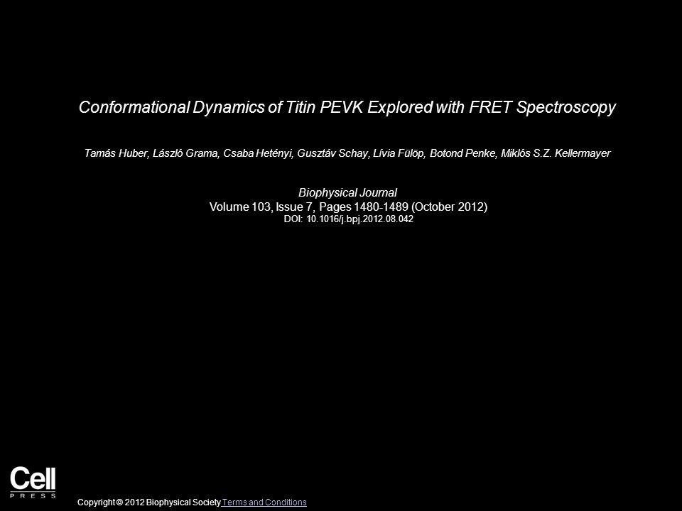 Conformational Dynamics of Titin PEVK Explored with FRET Spectroscopy Tamás Huber, László Grama, Csaba Hetényi, Gusztáv Schay, Lívia Fülöp, Botond Penke, Miklós S.Z.