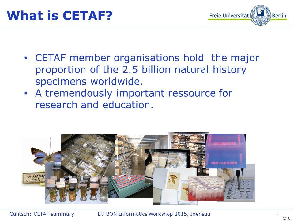 14 Further information … www.cetaf.org Güntsch: CETAF summaryEU BON Informatics Workshop 2015, Joensuu