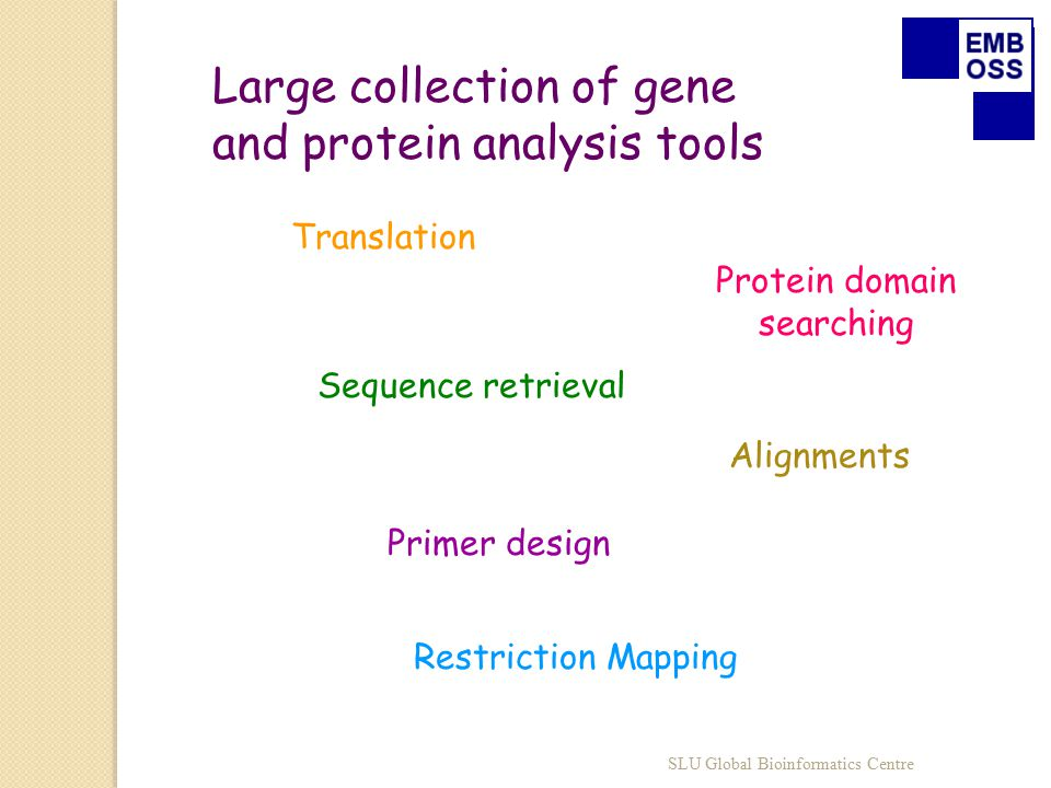 Large collection of gene and protein analysis tools Sequence retrieval Alignments Primer design Restriction Mapping Protein domain searching Translation SLU Global Bioinformatics Centre