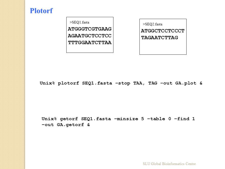 ATGGGTCGTGAAG AGAATGCTCCTCC TTTGGAATCTTAA >SEQ1.fasta ATGGCTCCTCCCT TAGAATCTTAG >SEQ2.fasta Unix% plotorf SEQ1.fasta –stop TAA, TAG –out GA.plot & Uni