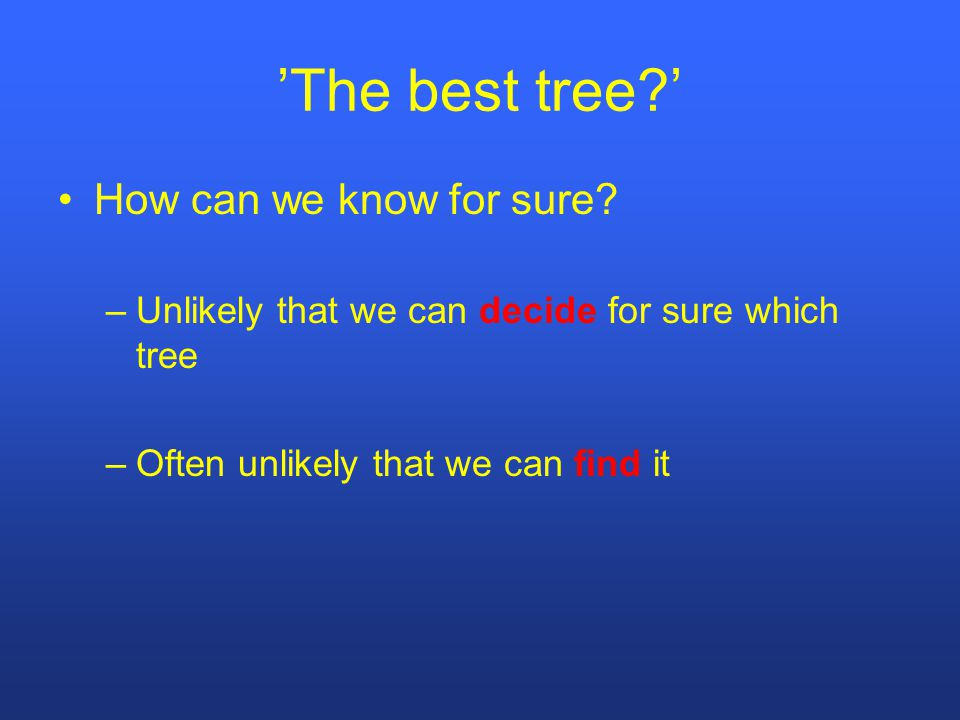 'The best tree?' How can we know for sure.