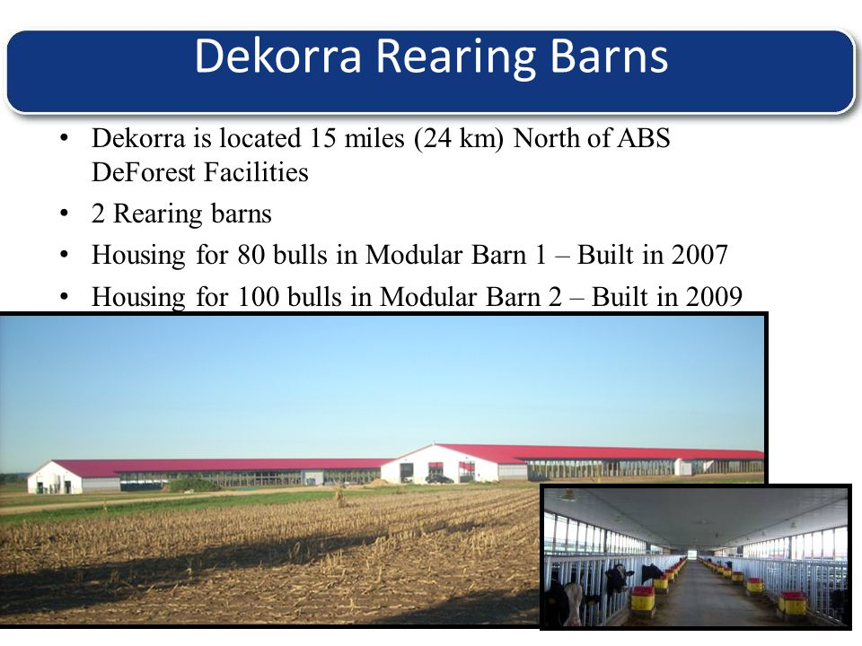 T H E W O R L D L E A D E R I N B O V I N E G E N E T I C S Dekorra Rearing Barns Dekorra is located 15 miles (24 km) North of ABS DeForest Facilities 2 Rearing barns Housing for 80 bulls in Modular Barn 1 – Built in 2007 Housing for 100 bulls in Modular Barn 2 – Built in 2009