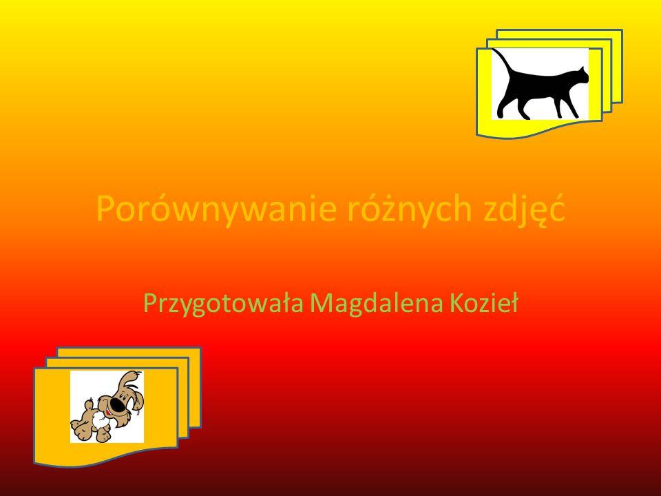 Porównywanie różnych zdjęć Przygotowała Magdalena Kozieł