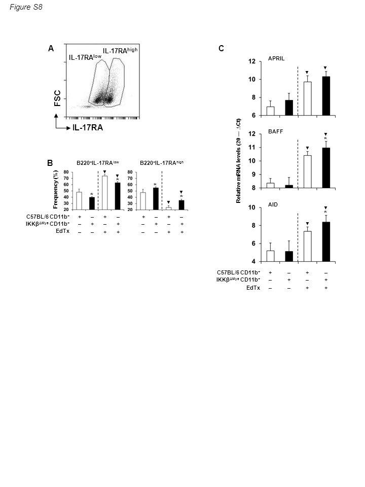 Figure S8 Frequency (%) B220 + IL-17RA low B220 + IL-17RA high B ▼ * * ▼ ▼ * ▼ * C57BL/6 CD11b + IKKβ ΔMye CD11b + EdTx + – – – + – – + + + – + + – – – + – – + + + – + FSC IL-17RA A IL-17RA low IL-17RA high APRIL BAFF AID * ▼ ▼ ▼ ▼ * ▼ ▼ Relative mRNA levels (20 ― ∆Ct) C57BL/6 CD11b + IKKβ ΔMye CD11b + EdTx + – – – + – – + + + – + C