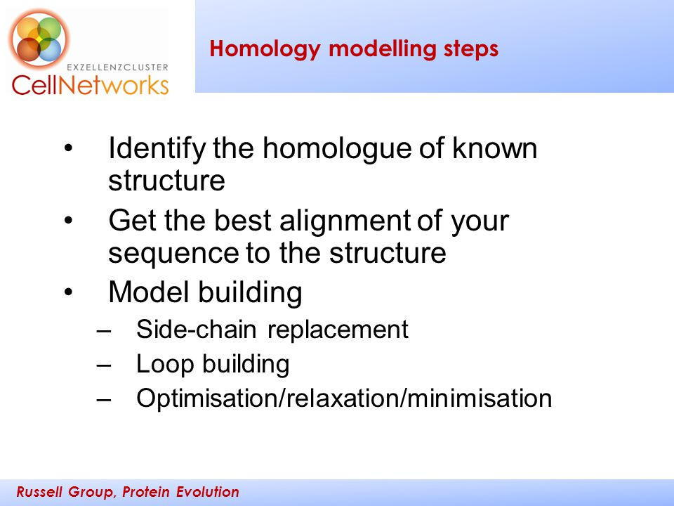 Russell Group, Protein Evolution _________ ____ Homology modelling steps Identify the homologue of known structure Get the best alignment of your sequ
