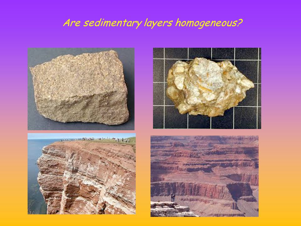 Are sedimentary layers homogeneous?