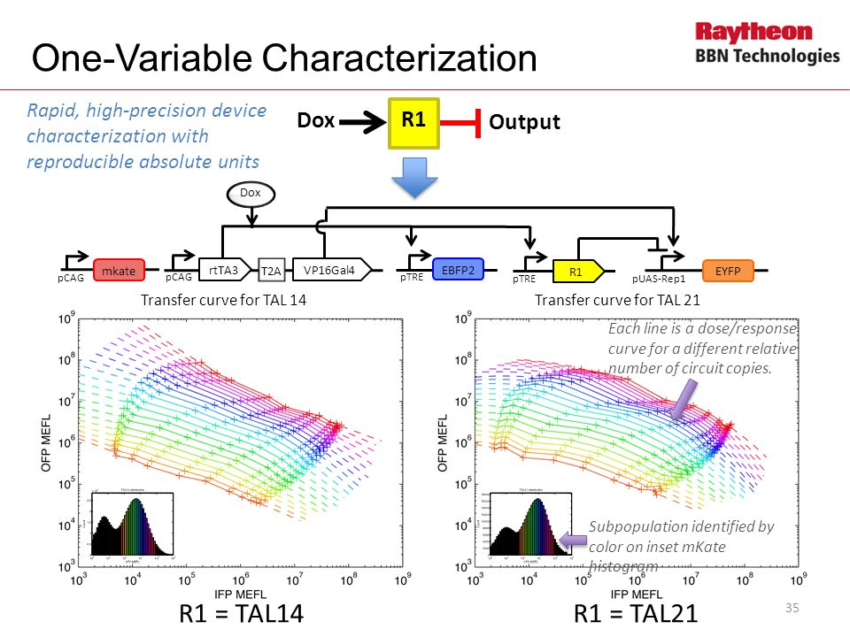 R1 = TAL14R1 = TAL21 35 Transfer curve for TAL 14Transfer curve for TAL 21 Output Dox R1 pCAG Dox T2A rtTA3VP16Gal4 pTRE EBFP2 pTRE R1 pUAS-Rep1 EYFP pCAG mkate pCAG Subpopulation identified by color on inset mKate histogram Each line is a dose/response curve for a different relative number of circuit copies.