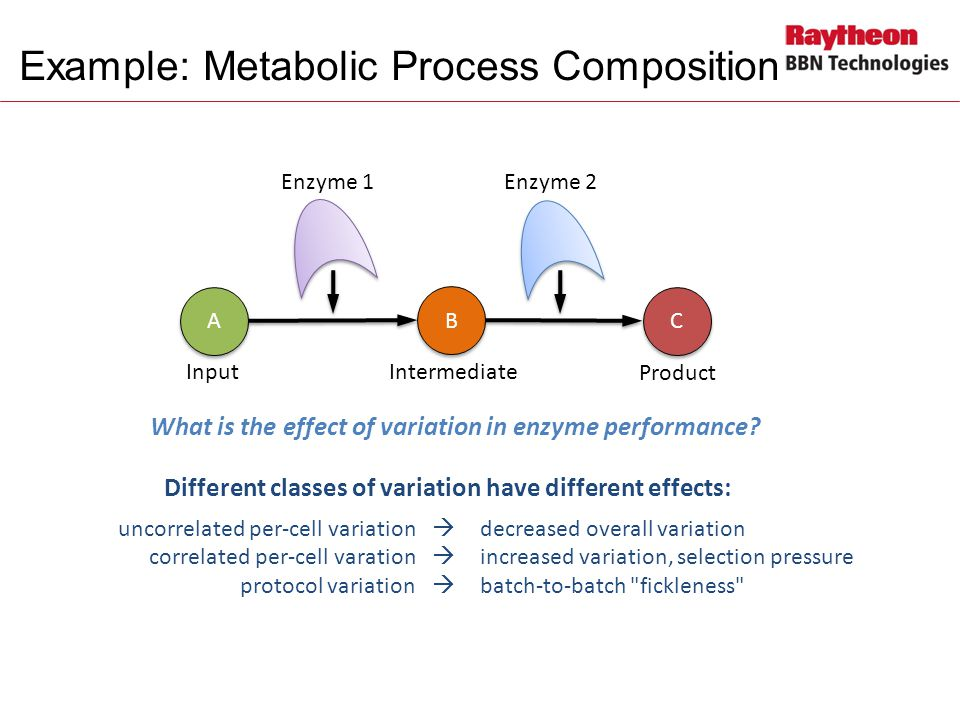 Example: Metabolic Process Composition A A B B C C uncorrelated per-cell variation  decreased overall variation correlated per-cell varation  increased variation, selection pressure protocol variation  batch-to-batch fickleness Enzyme 1Enzyme 2 Product IntermediateInput Different classes of variation have different effects: What is the effect of variation in enzyme performance?