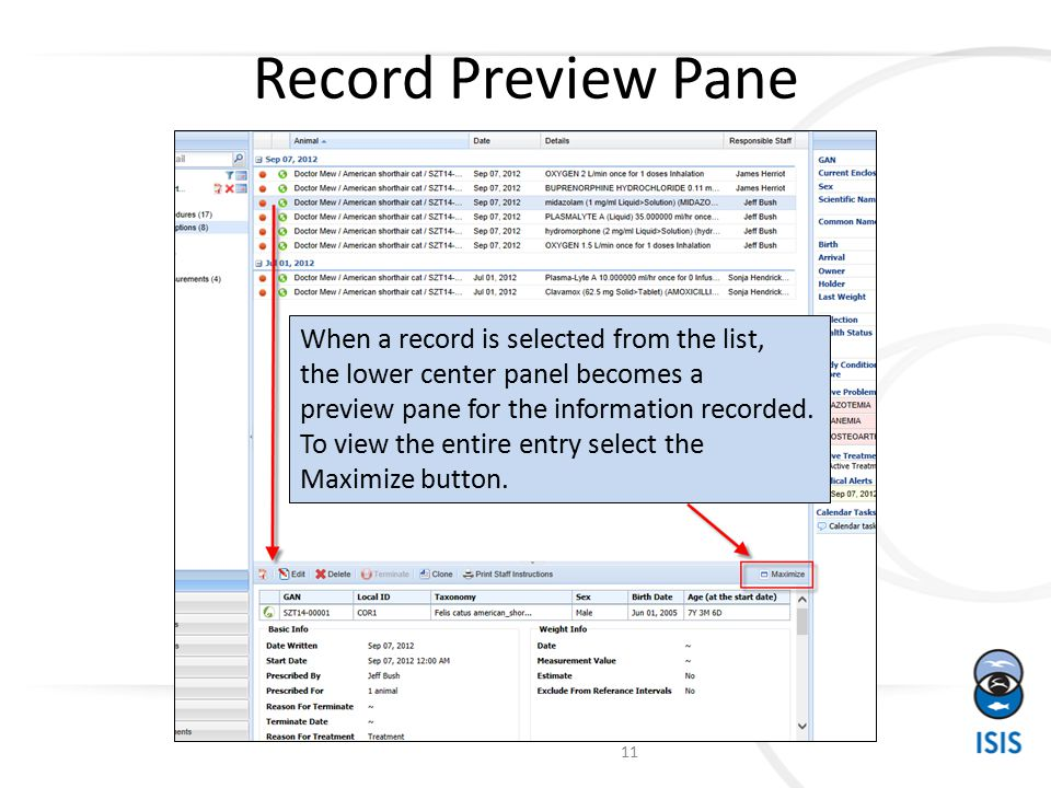 Record Preview Pane When a record is selected from the list, the lower center panel becomes a preview pane for the information recorded.