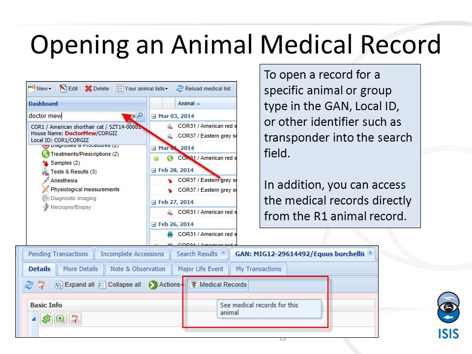 Opening an Animal Medical Record To open a record for a specific animal or group type in the GAN, Local ID, or other identifier such as transponder into the search field.