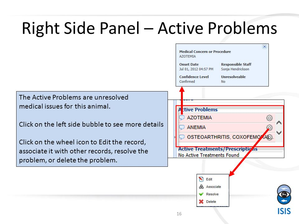 Right Side Panel – Active Problems The Active Problems are unresolved medical issues for this animal.
