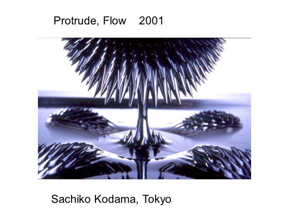 Sachiko Kodama, Tokyo Protrude, Flow 2001