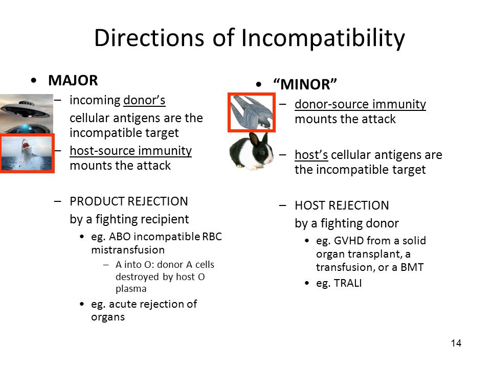 14 Directions of Incompatibility MAJOR –incoming donor's cellular antigens are the incompatible target –host-source immunity mounts the attack –PRODUCT REJECTION by a fighting recipient eg.