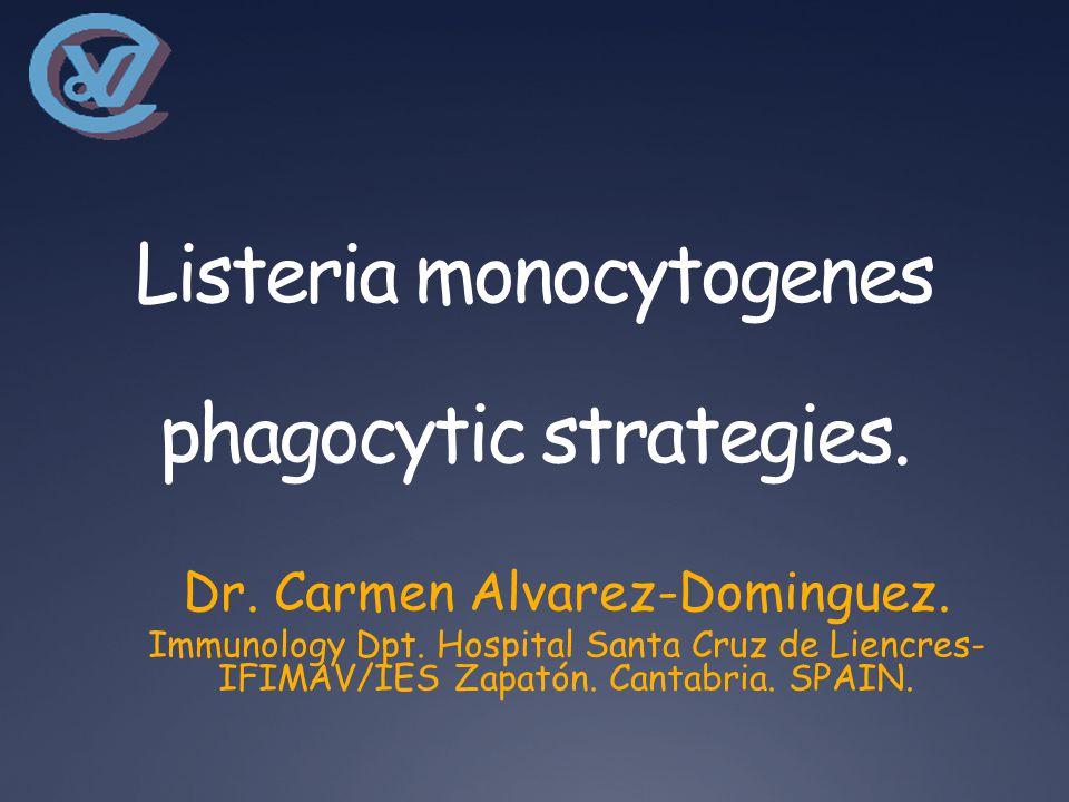 Listeria monocytogenes phagocytic strategies. Dr.