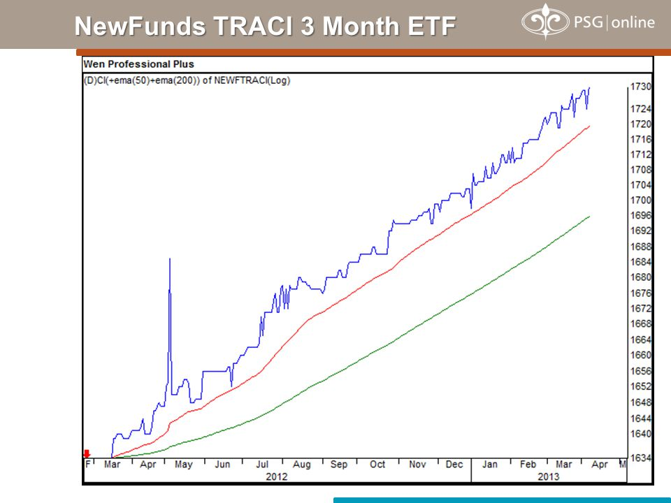 NewFunds TRACI 3 Month ETF