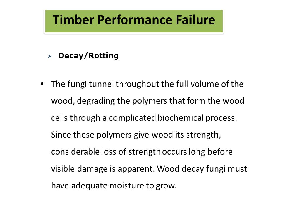 Timber Performance Failure The fungi tunnel throughout the full volume of the wood, degrading the polymers that form the wood cells through a complicated biochemical process.