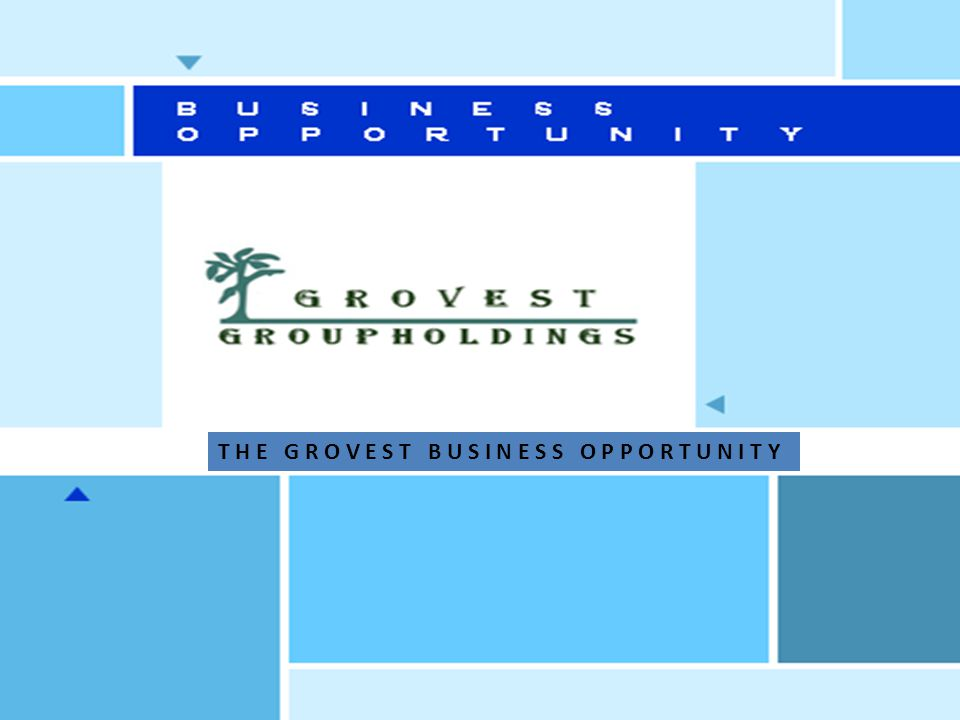 GroVest Group Online Trading Co Product Distribution and Marketing Co Commercial Business Co Property Co C O M P A N Y S T R U C T U R E