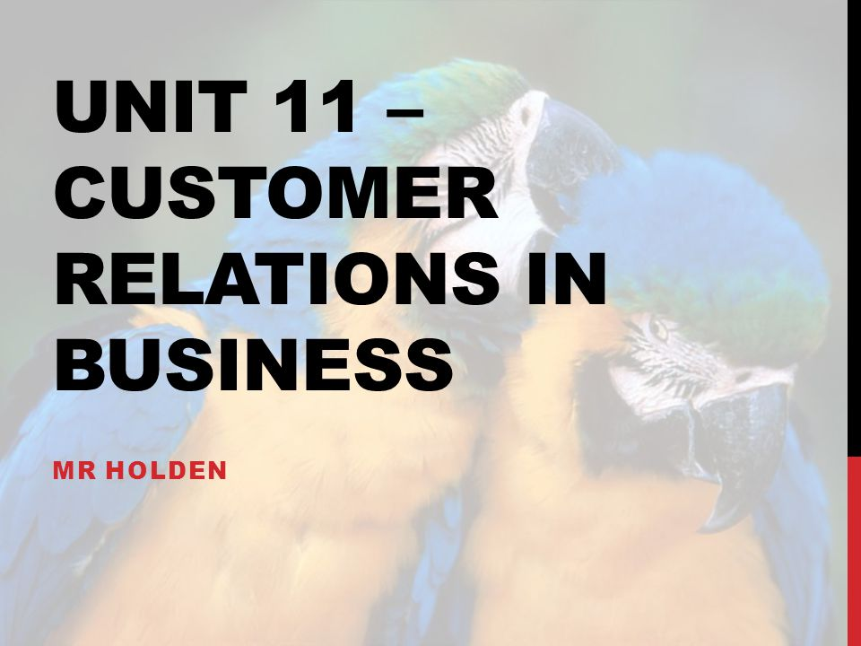 UNIT 11 – CUSTOMER RELATIONS IN BUSINESS MR HOLDEN