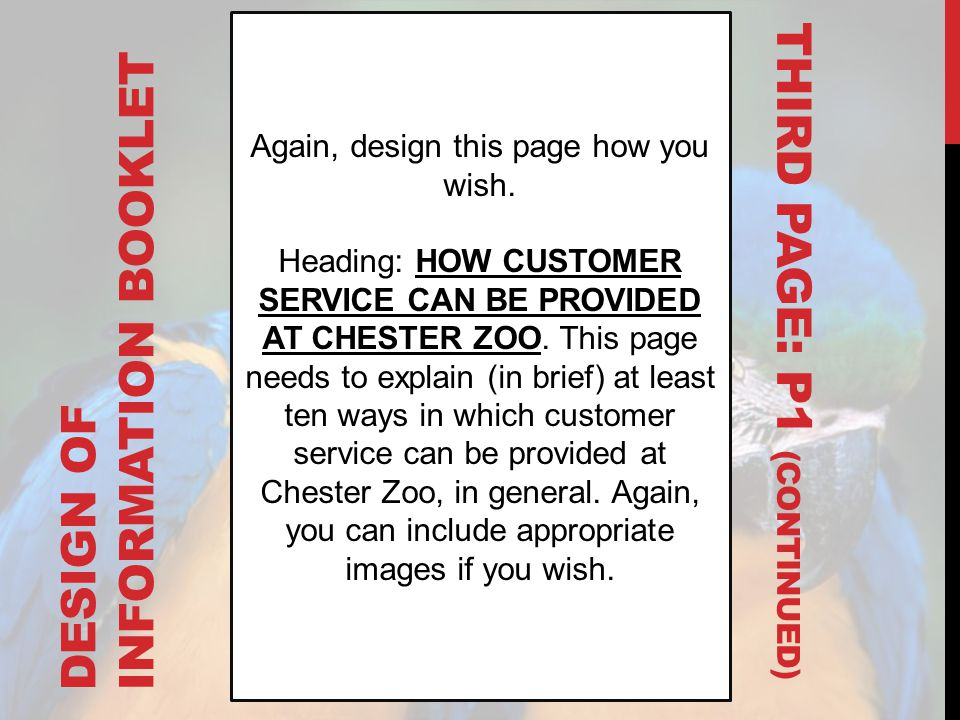 DESIGN OF INFORMATION BOOKLET Again, design this page how you wish. Heading: HOW CUSTOMER SERVICE CAN BE PROVIDED AT CHESTER ZOO. This page needs to e