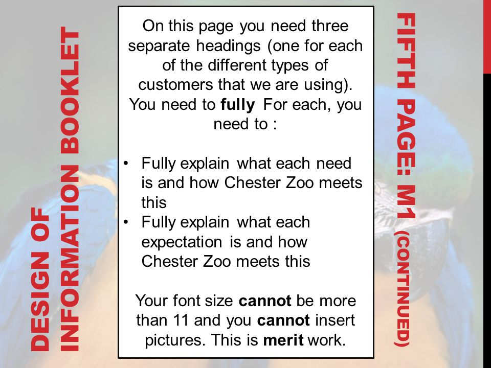 DESIGN OF INFORMATION BOOKLET On this page you need three separate headings (one for each of the different types of customers that we are using). You