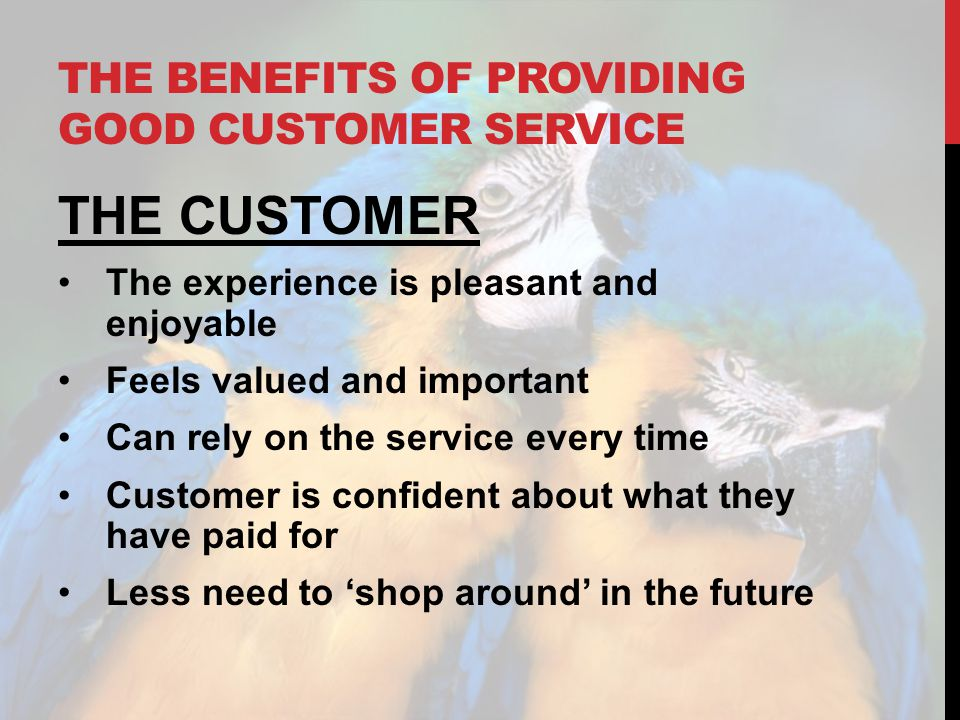 THE BENEFITS OF PROVIDING GOOD CUSTOMER SERVICE THE CUSTOMER The experience is pleasant and enjoyable Feels valued and important Can rely on the servi