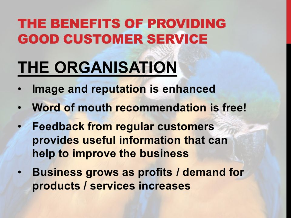 THE BENEFITS OF PROVIDING GOOD CUSTOMER SERVICE THE ORGANISATION Image and reputation is enhanced Word of mouth recommendation is free! Feedback from