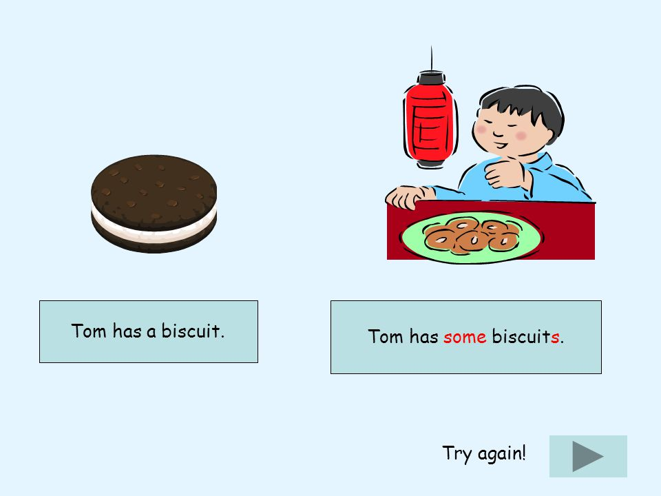 Tom has some biscuits. Try again!