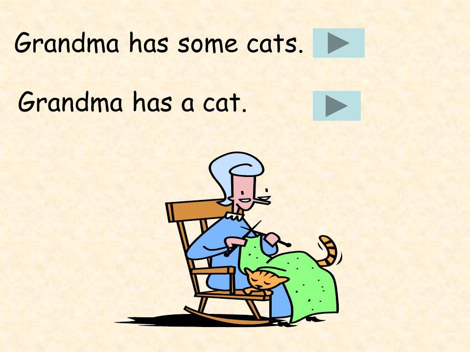 Grandma has some cats. Grandma has a cat.