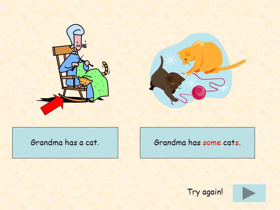 Grandma has a cat.Grandma has some cats. Try again!
