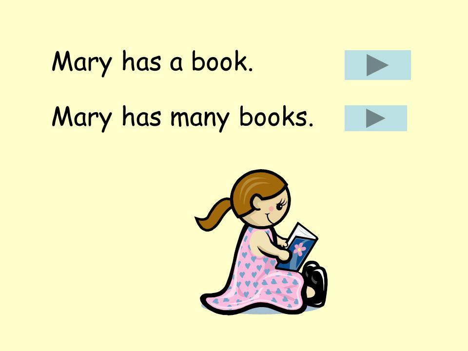 Mary has a book. Mary has many books.