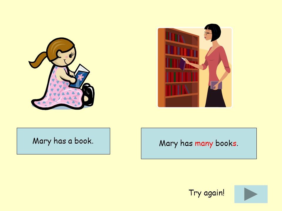 Mary has a book. Mary has many books. Try again!