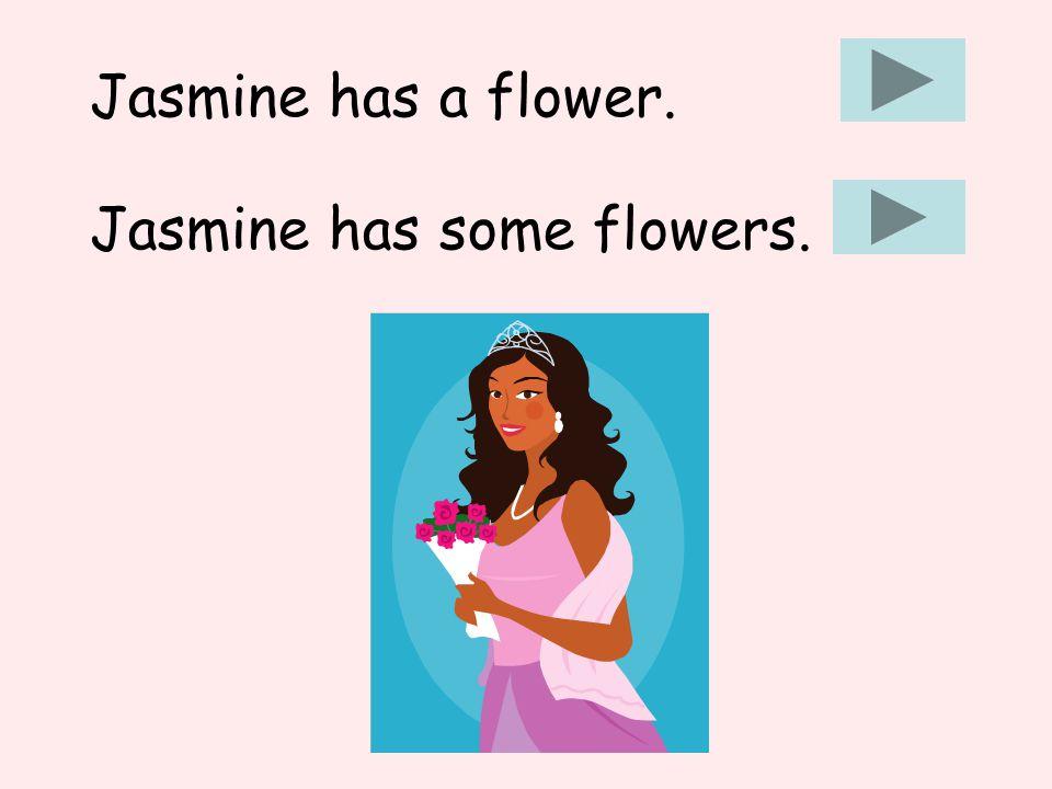 Jasmine has some flowers. Jasmine has a flower.